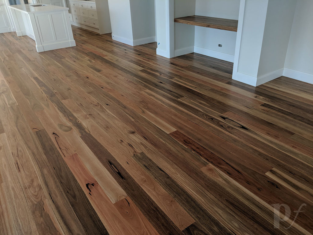 Spotted Gum - Hardwax Oil