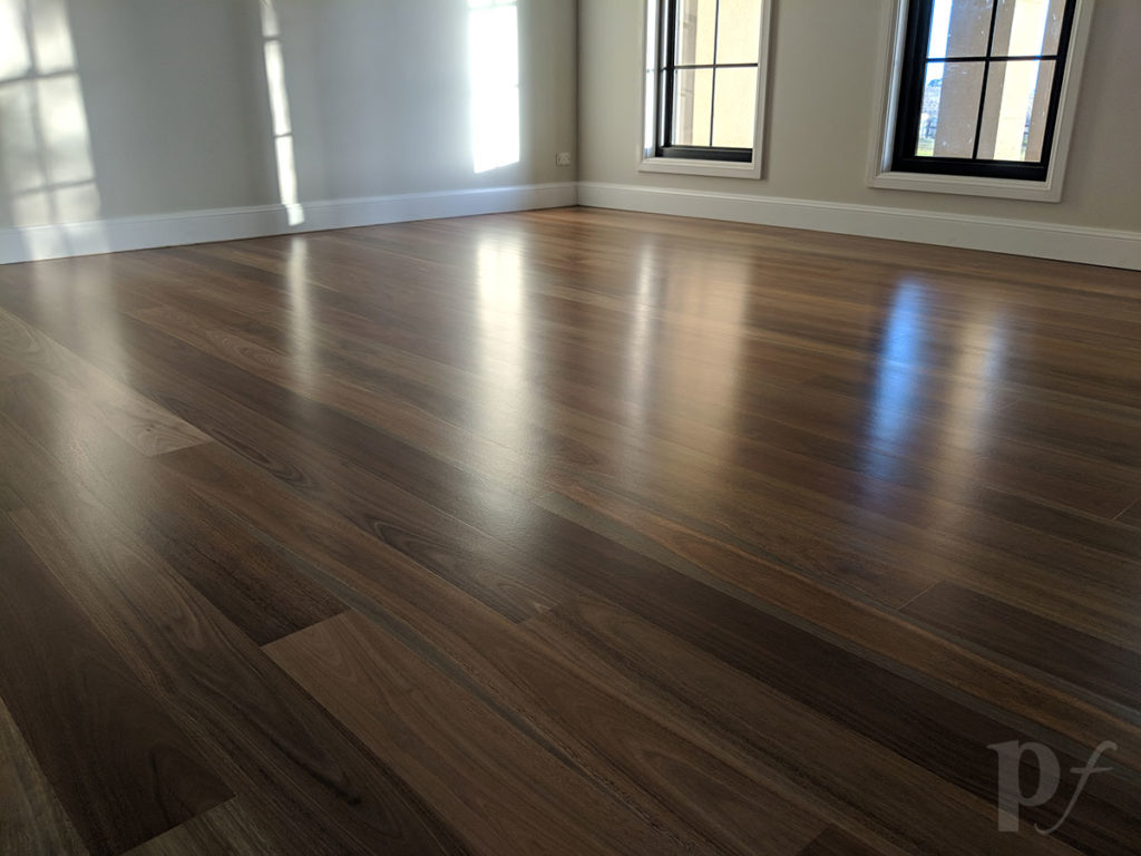 Spotted Gum - Satin Finish